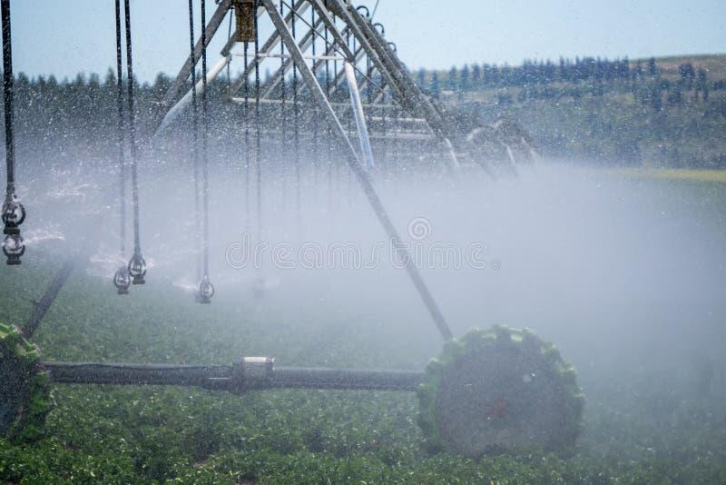 Attrezzatura di irrigazione sul campo dell'azienda agricola il giorno soleggiato fotografie stock libere da diritti