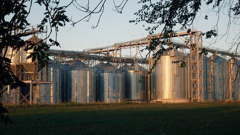 Attrezzatura di preparazione della birra del mestiere in serbatoi metallici della fabbrica di birra fotografie stock libere da diritti