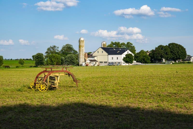 Attrezzatura di raccolta di Amish nel campo fotografie stock