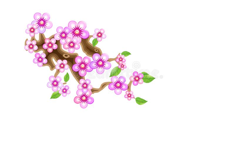 Attribute of hanami, branch sakura, illustration. Cherry blossom, with flowers in anime style. Unorthodox East Asian. Decoration tradition in partially animated stock illustration
