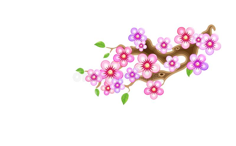 Attribute of hanami, branch sakura, illustration. Cherry blossom, with flowers in anime style. Unorthodox East Asian. Decoration tradition in partially animated vector illustration