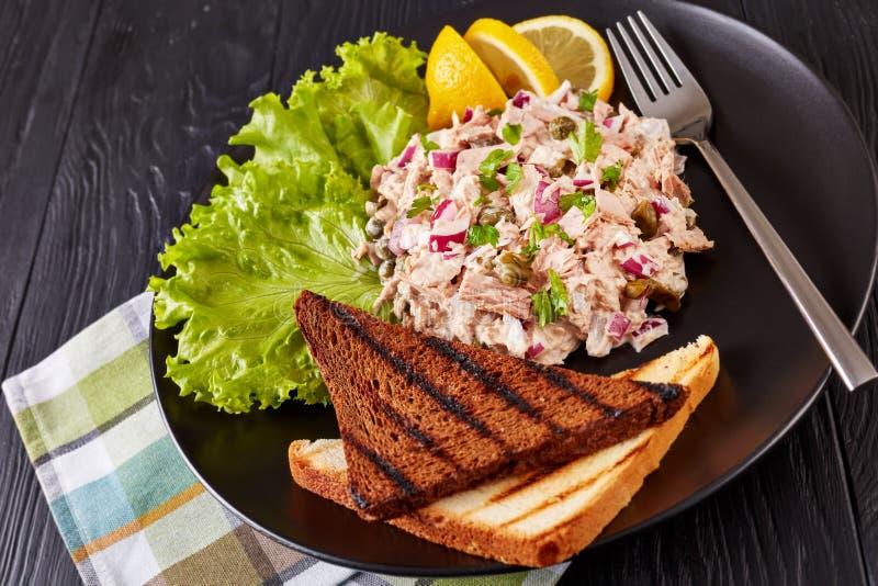 Atum, alcaparras e salada enlatados de Mayo fotografia de stock