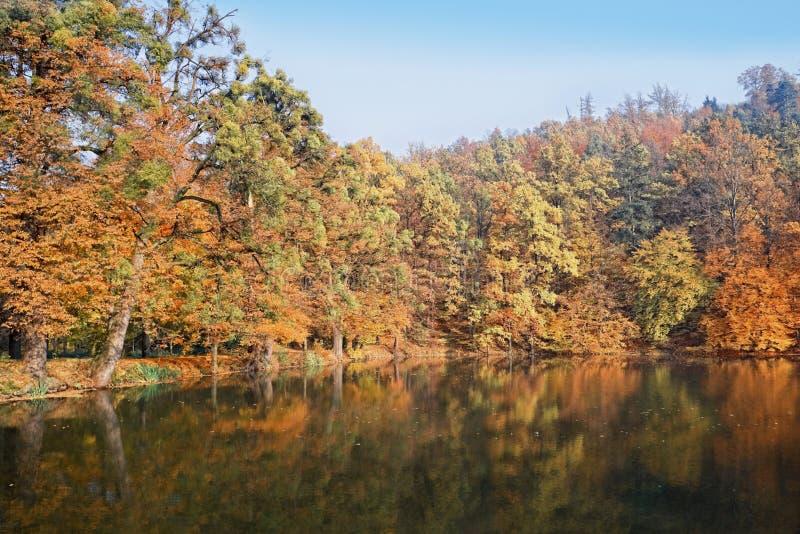 atumn美丽的池塘 免版税图库摄影