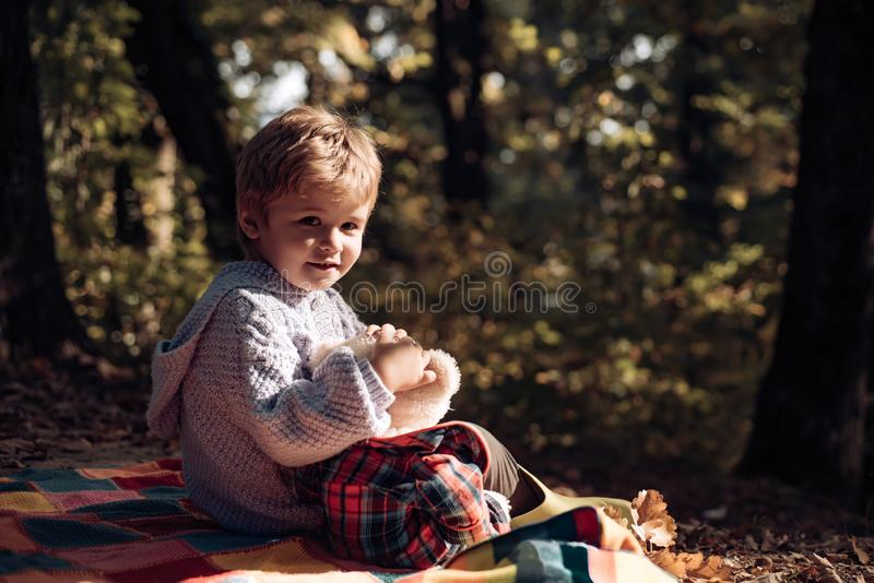 Atumn fun at the park. Hello Autumn bye Summer. royalty free stock image