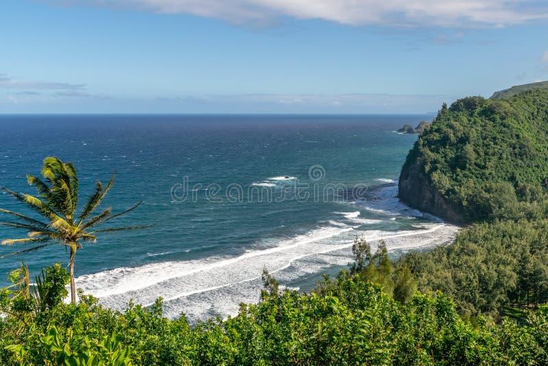 Aturdir la vista de la costa de Kohala en la orilla del norte de la isla grande de Hawaii, los E.E.U.U. Foto tomada en el puesto  imágenes de archivo libres de regalías