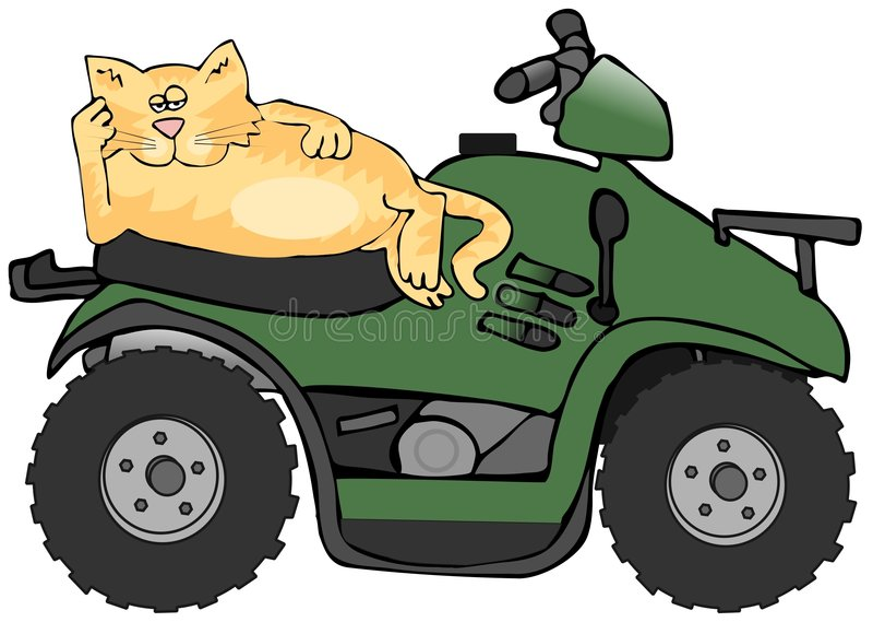 atv猫 向量例证