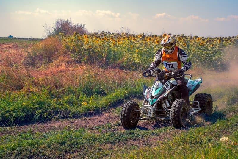 ATV na ação imagens de stock