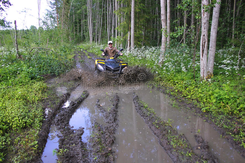 ATV Riding In The Forest Stock Photo
