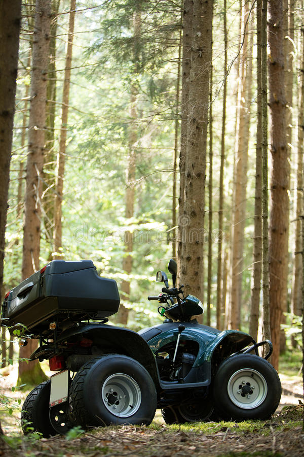 ATV's parked in the parking lot in the forest. good weather. royalty free stock image