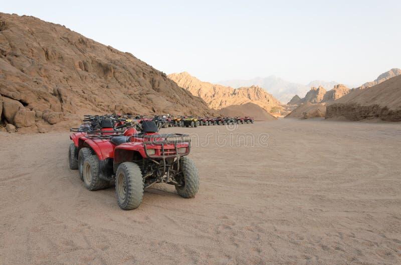 ATV safaris. Excursions in Egypt.  royalty free stock photos