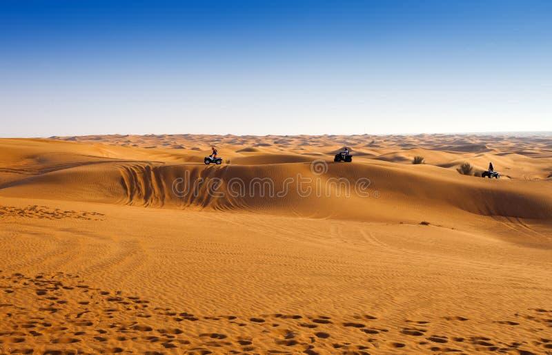 Опыт сафари пустыни стоковые изображения rf