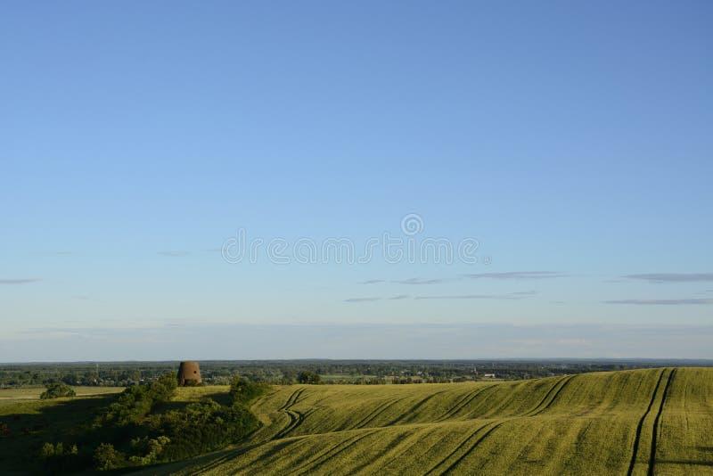 Außerhalb der Stadt - ländliche Landschaft - ein Feld stockbilder