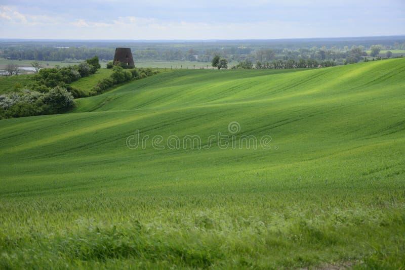 Außerhalb der Stadt - ländliche Landschaft - eine alte Windmühle auf dem Feld stockfoto