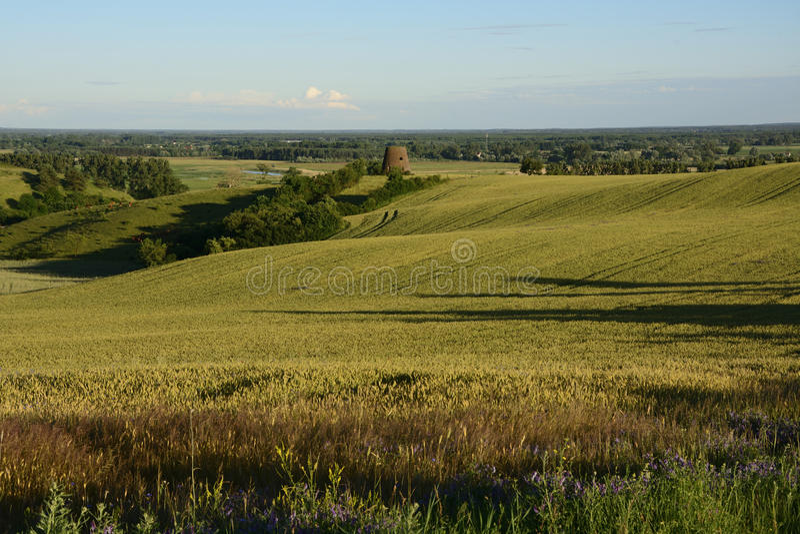 Außerhalb der Stadt - ländliche Landschaft - eine alte Windmühle auf dem Feld lizenzfreie stockfotografie