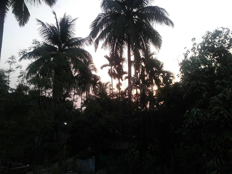 Au coucher du soleil photographie stock libre de droits