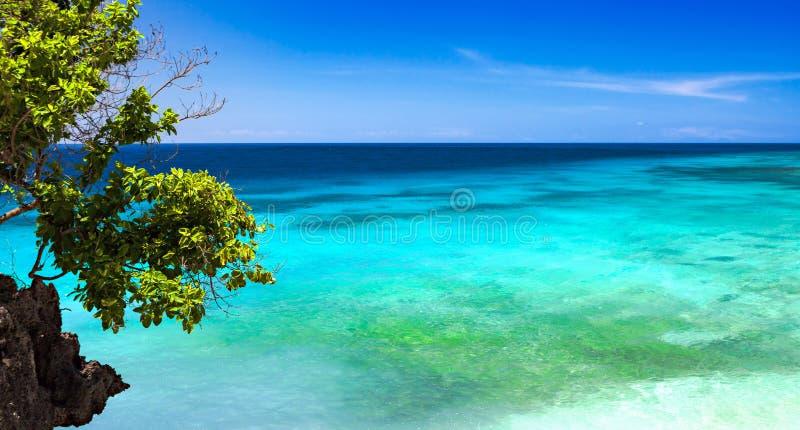 Au-dessus d'un récif image libre de droits