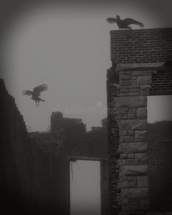 Au-dessus des ruines photo libre de droits