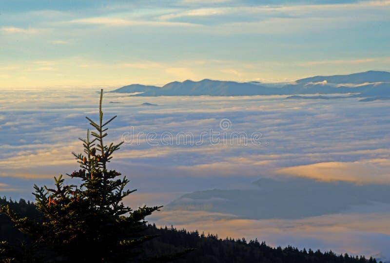 Au lever de soleil, une vallée est couverte de brouillard dans les montagnes fumeuses photos stock
