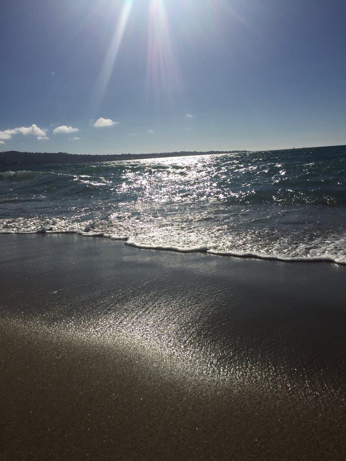 Au rivage à Monterey, CA photo libre de droits