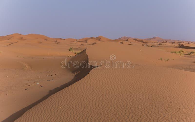 Au Sahara du Maroc images libres de droits