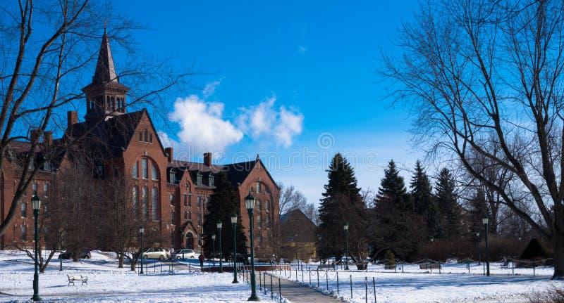 Au sol de campus photographie stock