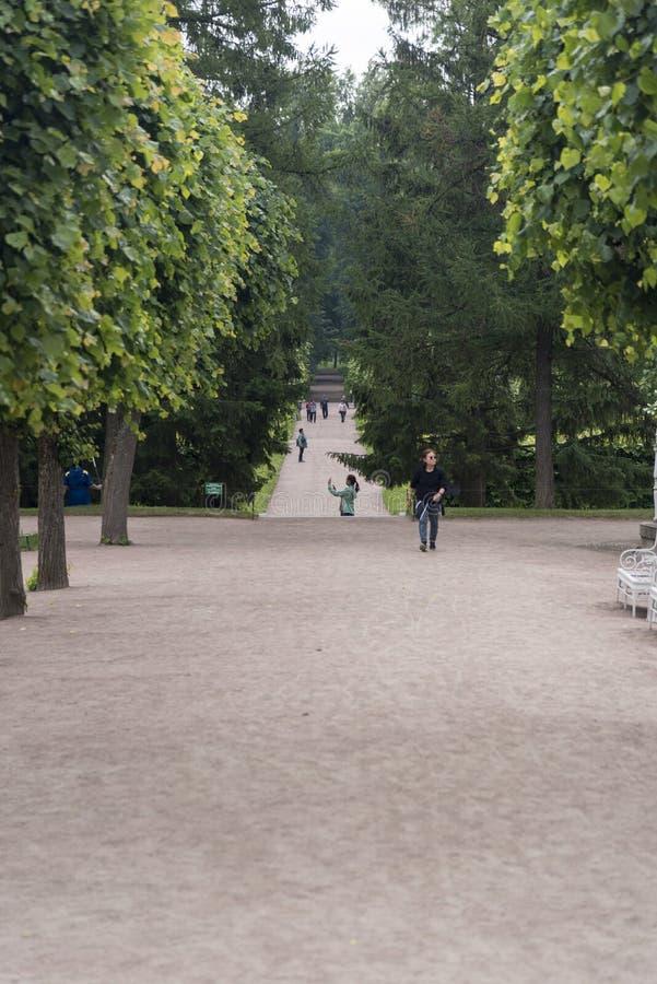 Au sol de Parkland de Catherine Palace St Petersburg Russia image stock