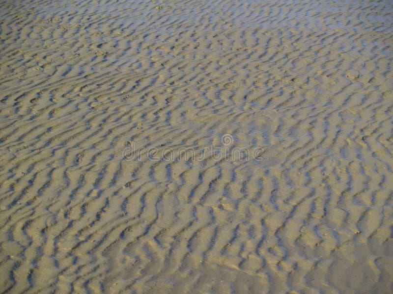 Au sol de Sandy de mudflat images stock