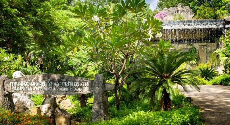 Au sol et zoo d'éléphant de Samphran image libre de droits