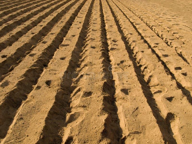 Au sol labourés frais préparent pour la culture image libre de droits