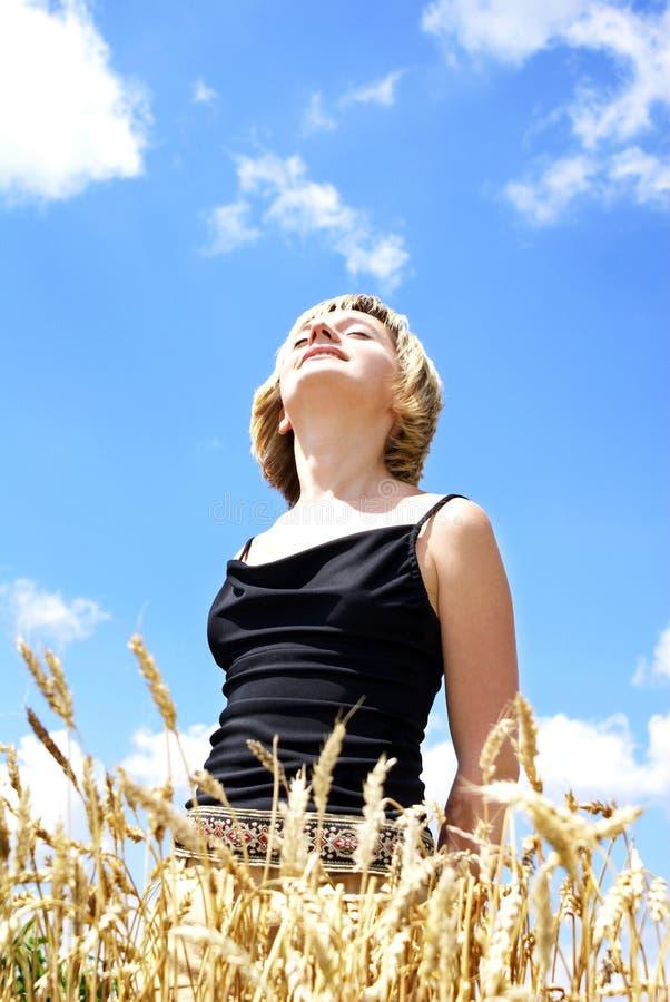 Au soleil images libres de droits