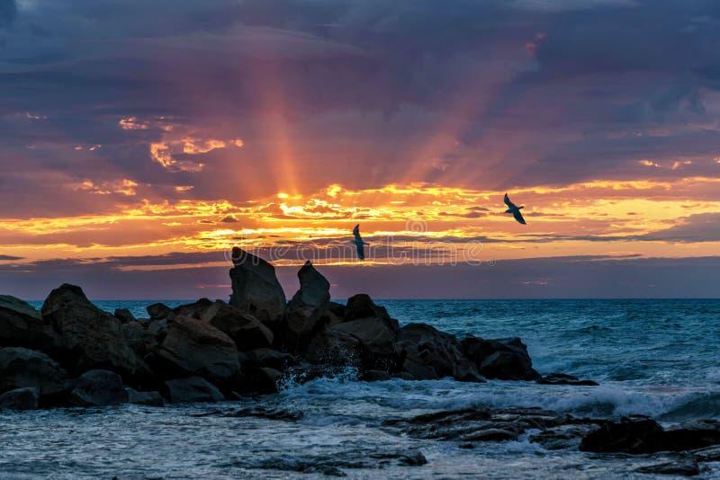 Aube à la baie d'Opollo, grande route d'océan, Victoria, Australie photo stock