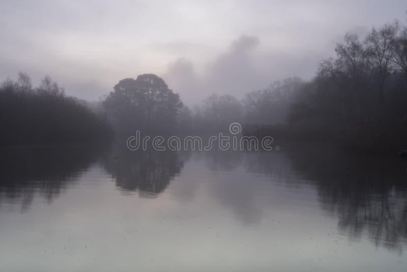 Aube brumeuse au lac ornemental photos libres de droits