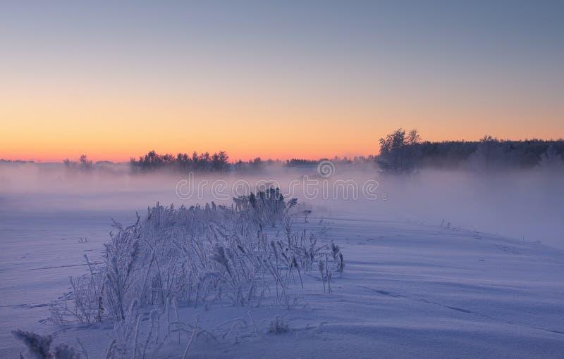 Aube brumeuse d'hiver Fond coloré de Noël photographie stock libre de droits