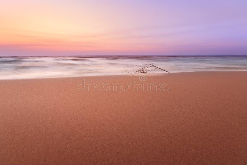 Aube calme sur une plage sauvage photo libre de droits