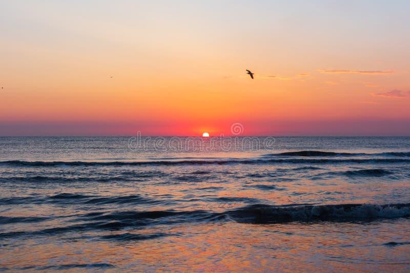 Aube colorée étonnante en mer photos libres de droits