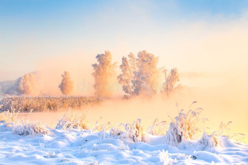 Aube d'hiver  Le pays des merveilles de Noël Noël coloré photos libres de droits