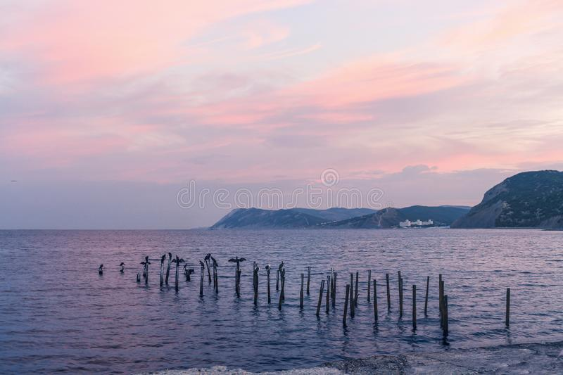 Aube de la Mer Noire Nuages roses, les montagnes et oiseaux se reposant sur des tuyaux en métal photo stock