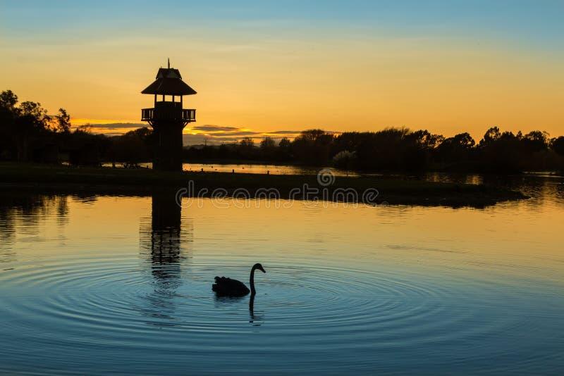 Aube de lac Henly photo libre de droits