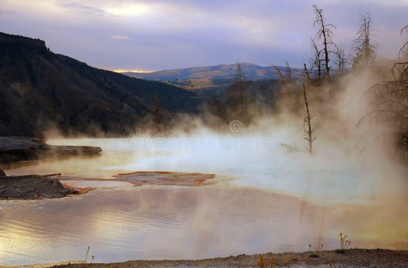 Aube de Mammoth Hot Springs photographie stock