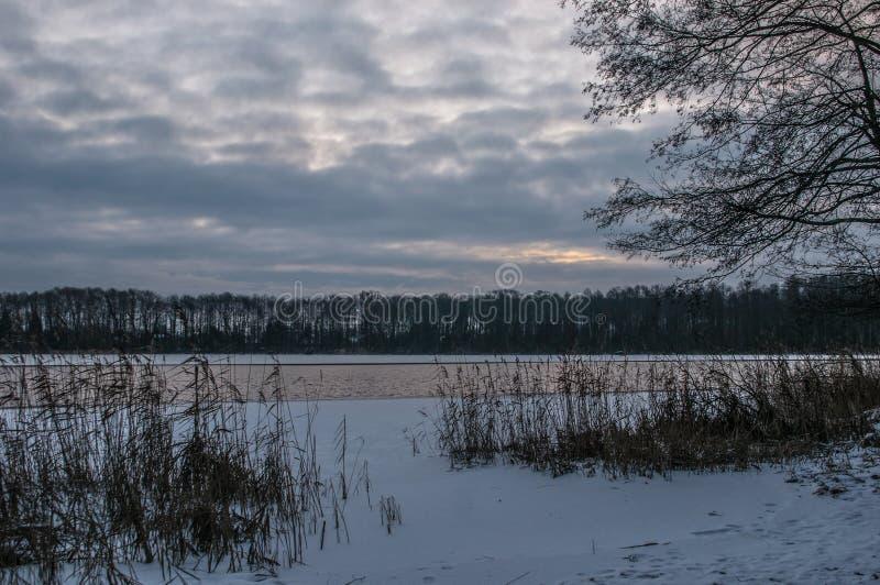 Aube sombre d'hiver image libre de droits