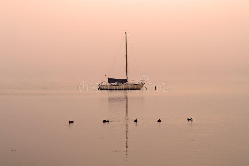 Aube sur le lac avec un bateau et des canards photo libre de droits