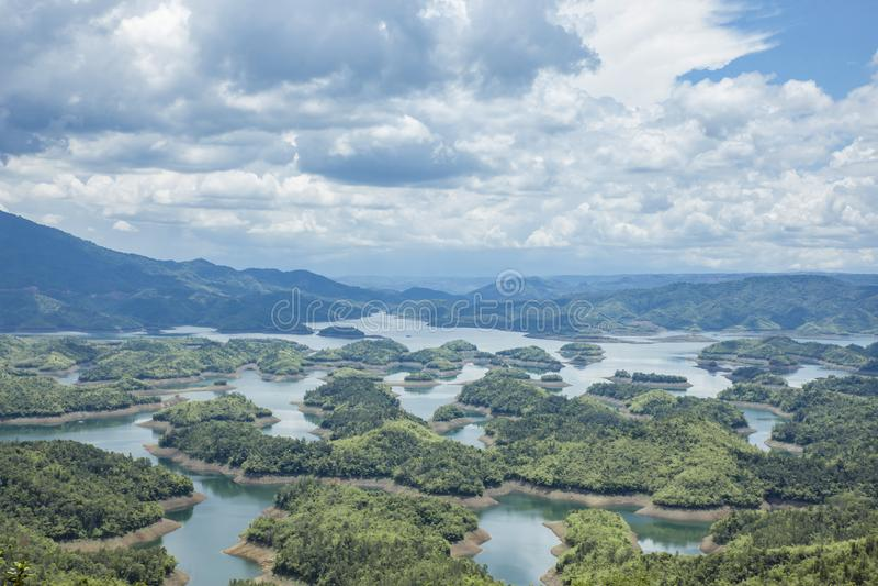 Aube sur le lac Vietnam, thé vert TaDung d'arbre photo stock