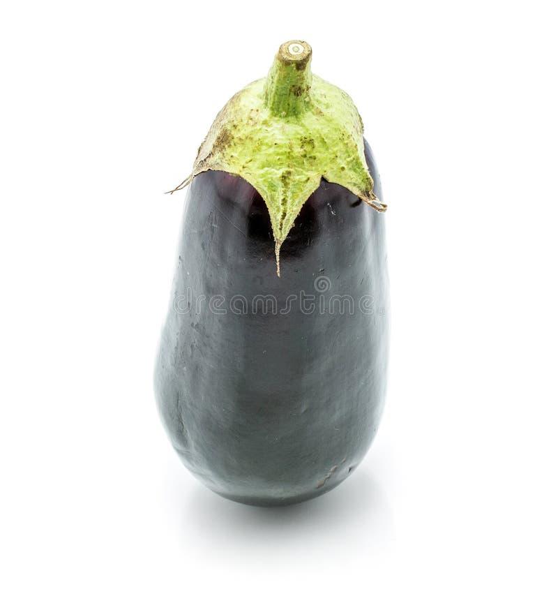aubergine arkivbild