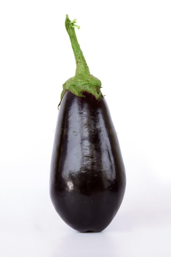 Aubergine. Isolated aubergine royalty free stock photos