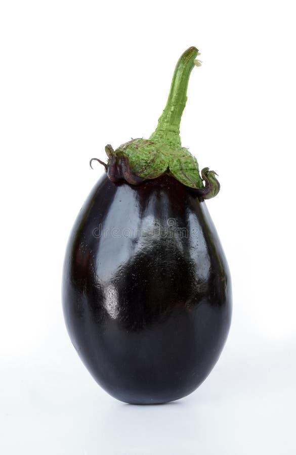 Aubergine. Isolated aubergine stock photography