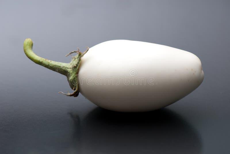 Aubergine lizenzfreie stockfotografie