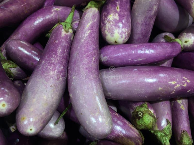 aubergine royalty-vrije stock afbeeldingen