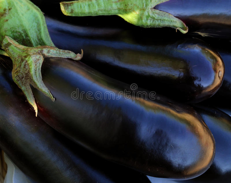 Aubergine. View of a group of aubergine in a vegetable shop royalty free stock images