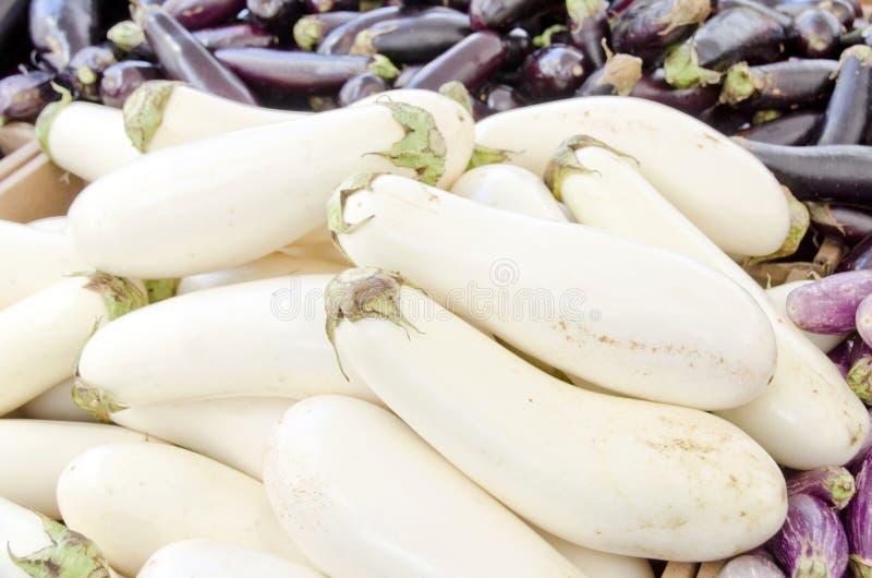 aubergine royalty-vrije stock afbeelding