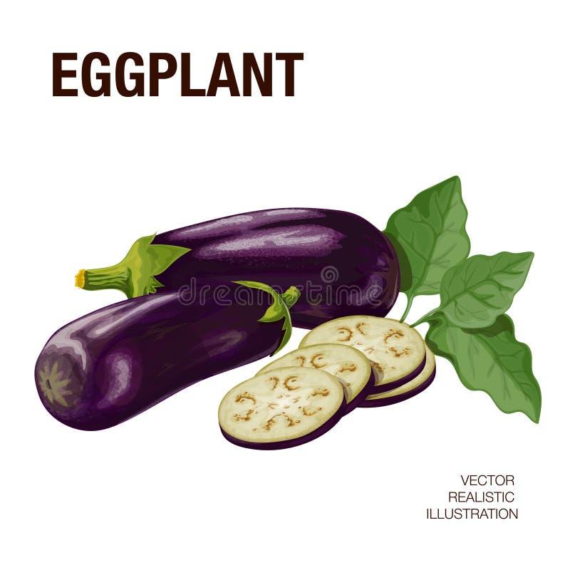 aubergine illustration libre de droits